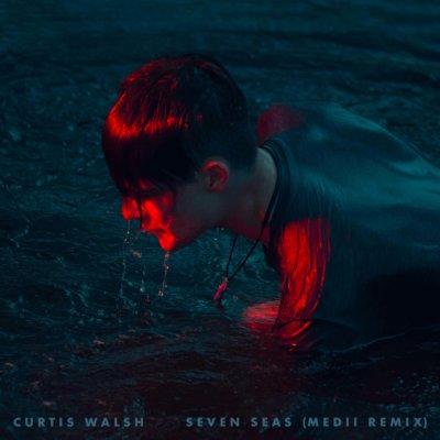 Curtis Walsh - Seven Seas (Medii Remix)