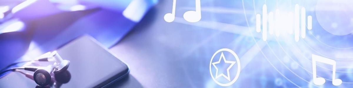 Digital music distribution. Educational project